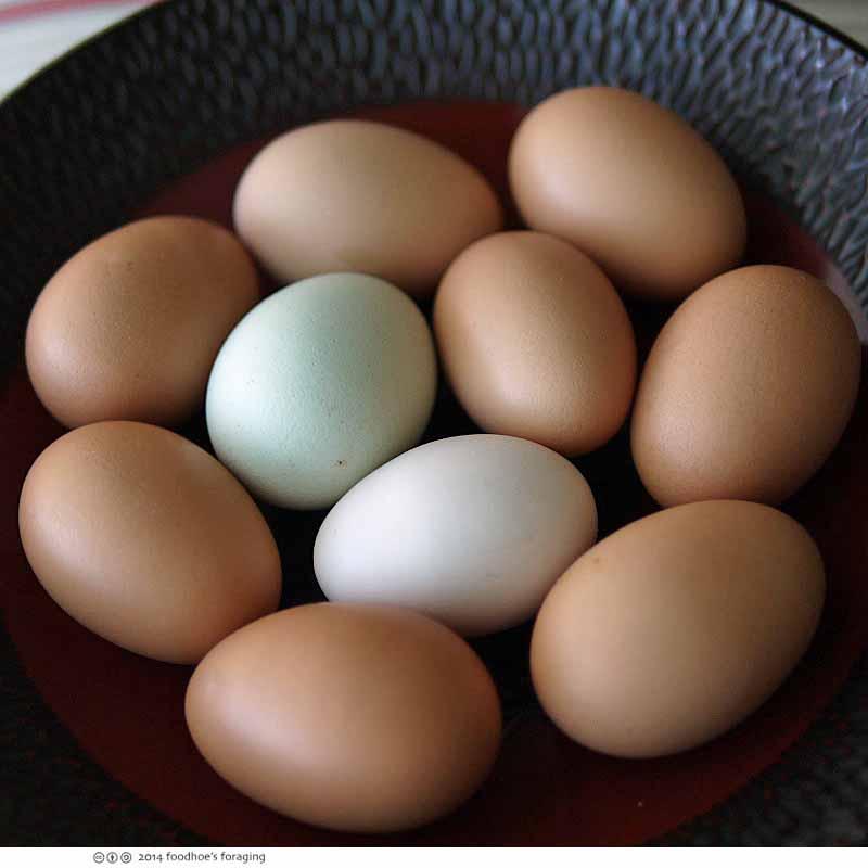 muffin_eggs