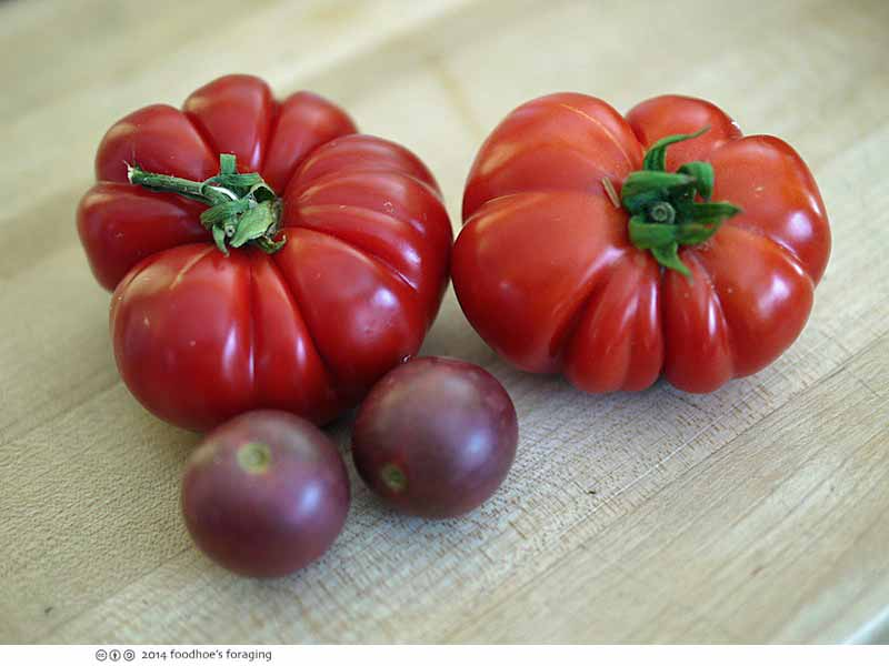 feastly_tomato
