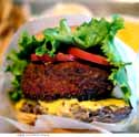 Thumbnail image for the wondrous Shake Shack burger