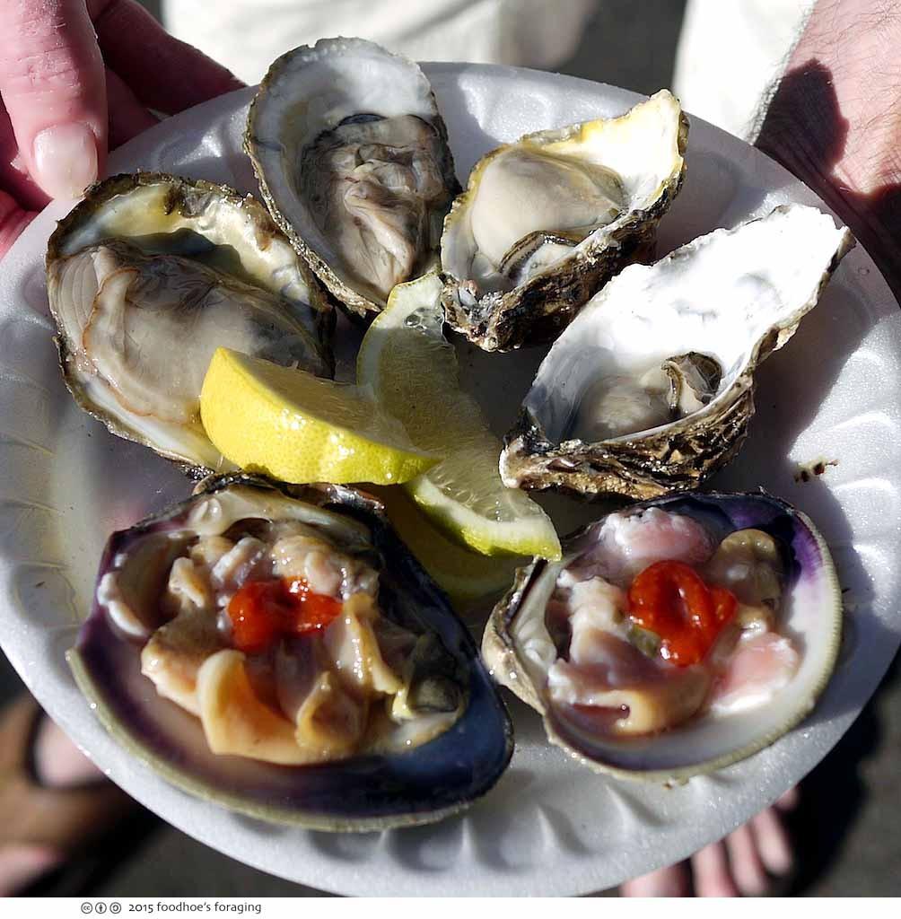 sd_mercado_oysters