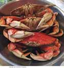 Thumbnail image for The boats are in and the crabs are gorgeous!