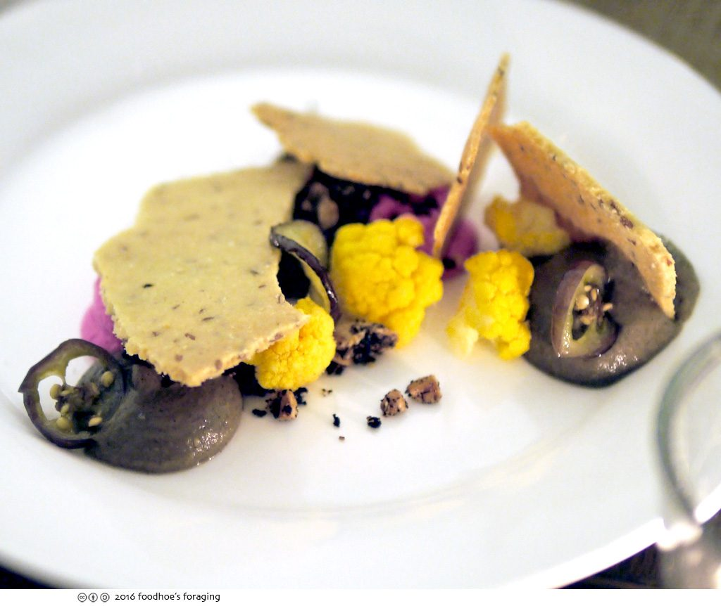 wildcat_eggplant
